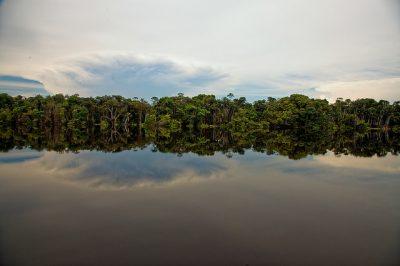 La forêt amazonienne et ses eaux miroirs